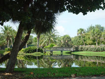 Lagoon. Tropical lagoon Captiva Island Florida royalty free stock photo