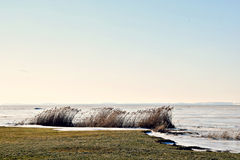 lagoon στοκ φωτογραφία με δικαίωμα ελεύθερης χρήσης