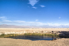 Lagoon in the Atacama desert Stock Photography