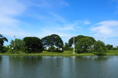 Beside lagoon. With blue sky background Royalty Free Stock Photos