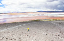 Lagoon in Bolivia. This photo is taken in Bolivia Royalty Free Stock Photo