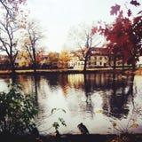 Lagoon. City, water, nature Royalty Free Stock Image