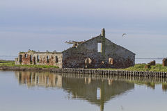 Lagoon of Comacchio Royalty Free Stock Image