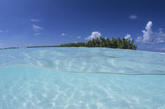 Lagoon french Polynesia. Lagoon, palm trees and turquoise water, french Polynesia Stock Photography