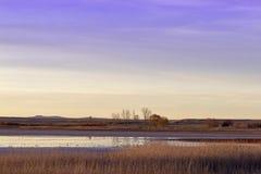 Lagoon of Gallocanta. Aragon. Spain Royalty Free Stock Image