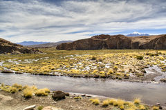Lagoon at the highlands. Lagoon in the Andean highlands in Bolivia Royalty Free Stock Image