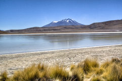 Lagoon at the highlands. Lagoon in the Andean highlands in Bolivia Royalty Free Stock Images
