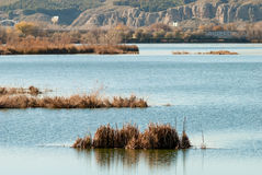 Lagoon Royalty Free Stock Image