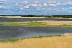 Lagoon landscape of bird reservation park Royalty Free Stock Photo