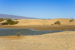 Lagoon at Maspalomas Stock Photography