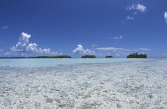 Lagoon, palm trees and turquoise water, vacation in french Polynesia Stock Images