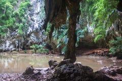 Lagoon at Railay Royalty Free Stock Photo
