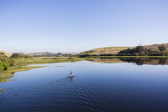 Lagoon River Paddler Solitude. Blue glass smooth lagoon river water with sup paddler paddling board on the scenic landscape Stock Photography