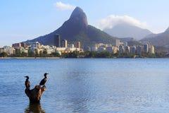 Lagoon Rodrigo de Freitas (Lagoa), Rio de Janeiro Stock Photography