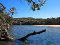 Lagoon landscape Australian national park. An beautiful lagoon of Sydney's heritage-listed Royal National Park (the worlds second oldest national park Royalty Free Stock Images