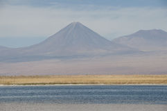 Lagoon saltwater, Chile Royalty Free Stock Photography