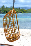 lagoon seat osier  seaweed in nosy be indian Royalty Free Stock Photography