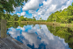 Lagoon Swamp sky reflection water. In Florida bayou, Pensacola, Florida river stream fish from dock stock image