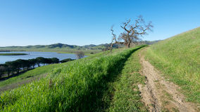 Lagoon Valley Park In Vacaville Stock Image
