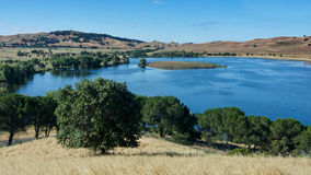 Lagoon Valley Park. Panoramic view of the Lagoon Valley Park in Vacaville, California, USA, featuring the chaparral in the spring, with golden grass, and the Stock Photography