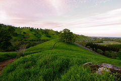 Lagoon Valley Park. Panoramic view of the Lagoon Valley Park in Vacaville, California, USA, featuring a pasture in the winter with green grass, the city of Stock Image