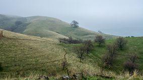 Lagoon Valley Park rolling hills. Panoramic view ofhe Lagoon Valley Park in Vacaville, California, USA, on a foggy winters day, featuring rolling hills and a Royalty Free Stock Image