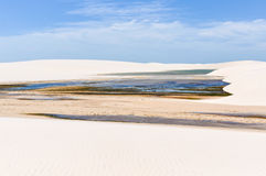 Lagoons in Lencois Maranheses, Brazil Stock Photo