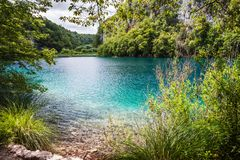 Lagos cascades con agua de la turquesa entre las rocas en el bosque Plitvice, parque nacional, Croacia imagen de archivo libre de regalías