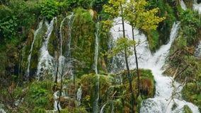 Lagos con la cascada en Croacia, Europa Ubicación: Plitvice, jezera de Plitvicka del parque nacional almacen de metraje de vídeo