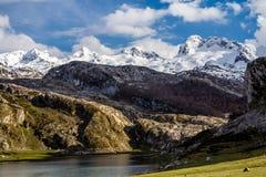 Jeziorny Ercina w Covadonga i park narodowy szczytach Obraz Royalty Free