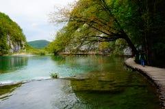 Lagos Plitvicka Jezera, Croácia Fotografia de Stock Royalty Free