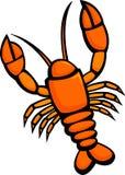 Lagosta crustácea Imagens de Stock