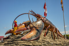 A lagosta a maior do ` s do mundo - Shediac Fotos de Stock Royalty Free