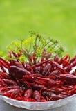 lagostas Imagem de Stock