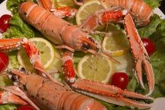 Lagostas alaranjadas crus, crustáceos aquáticos dentro da bandeja branca Imagem de Stock