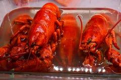 Lagostas vermelhas na água fria no mercado imagens de stock
