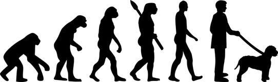 Lagotto Romagnolo ewolucja ilustracji