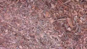 Lagringsfack för fast bränsle Bunker för bränslelagring Högar av trächiper i lagring Wood chiper för en biomassaförbränning lager videofilmer
