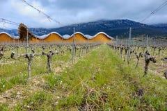 Laguardia, Alava, Spagna 30 marzo 2018: Le vigne della cantina del premio di Rioja hanno chiamato Ysios e la parte della facciata Fotografie Stock