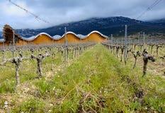 Laguardia, Alava, Spagna 30 marzo 2018: Le vigne della cantina del premio di Rioja hanno chiamato Ysios e la parte della facciata Immagine Stock