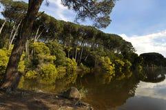 lagun Royaltyfria Bilder