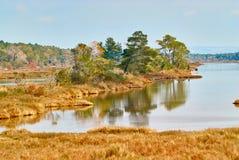 Lagun av karavastaen i Albanien Arkivfoto