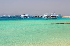 Lagun av Röda havet på den Mahmya ön Royaltyfria Bilder