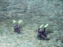 Lagun Beach divers Stock Images