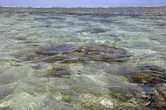Lagun för dam Elliot Island royaltyfria foton