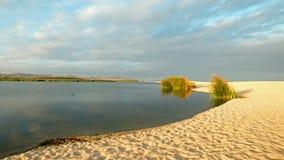Lagun för naturreserv på San Jose del Cabo i Baja California Mexico royaltyfri foto