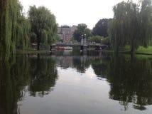 Lagun i Boston Fotografering för Bildbyråer