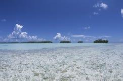 Lagun, palmträd och turkos bevattnar, semestrar i franska Polynesien Arkivbilder