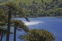 Laguna zdjęcia stock