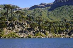 Laguna Fotografía de archivo libre de regalías